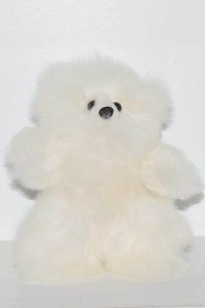 white medium teddy bear