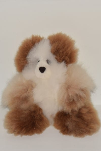 white & brown medium teddy bear