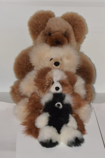 Teddies product picture