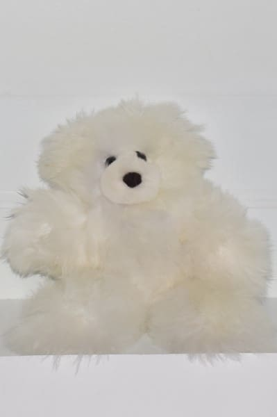 white large teddy bear